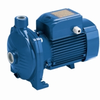 Pedrollo Pumps End Suction, Close Coupled Centrifugal Water Pumps