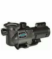 StaRite SuperMax In-Ground Swimming Pool & Spa Water Pumps <Br>