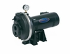 Berkeley / StaRite  PLS Series Thermoplastic Shallow Well Jet Pump