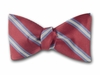 "Bow Tie ""Success"""