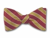 "Bow Tie ""Campus Stripes"""