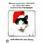 funny novelty apron Buster Christmas cat