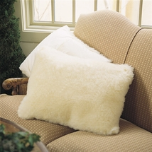 Pillow Protectors & Covers