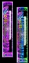 "Liquid Neon 15"" & 20"" lights by LiteGlow"