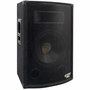 "Pyle 10"" Two-Way Speaker Cabinet PADH1079"