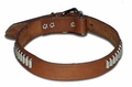1 inch wide Oblong Studded Bully Dog Collar