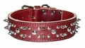 Spikes and Studs Leather Dog Collar 1-3/4 inch