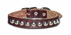 Studded Dog Collars 1/2 Inch Wide