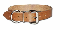 Heavy Oiled Regular Bully Dog Collar 3/4 Inch Wide