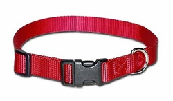 3/4 inch wide Kwik Klip Adjustable Dog Collar