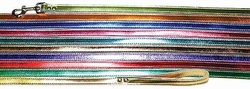 3/4 inch wide x 4 Ft Metallic Leather Leash