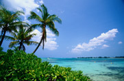 BEACHES & ISLANDS OF THE WORLD:  LINKS