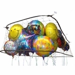 4' X 8' Balloon Corral