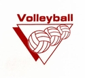 Volleyball Triangle Design Discount Long Sleeve Shirt - in 3 Shirt Colors