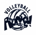 Volleyball Rocks! Design Discount Shirt - in 3 Shirt Colors