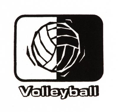 Volleyball in Motion Design Discount Shirt - in 3 Shirt Colors