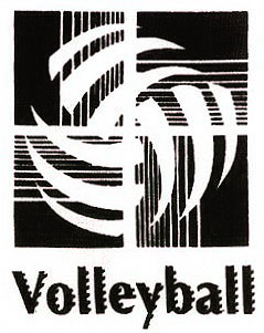 Volleyball Abstract Design Discount Long Sleeve Shirt - in 3 Shirt Colors