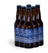 Ramapo Valley Gluten Free Beer 6 pack