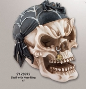 Skull with Nose Ring