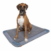 Pet Travel Mat Slate Large