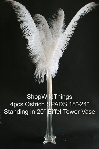 White feathers ostrich feather centerpiece