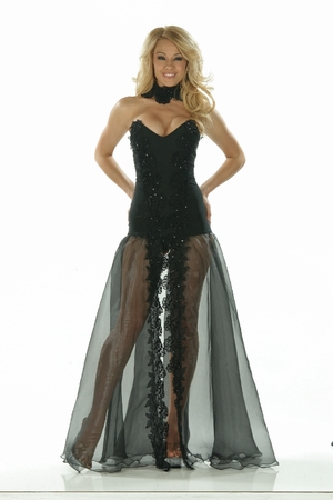 Lycra/Organza/Sequin Lace Gown * 4861X