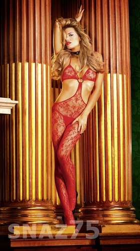 Lace Bodystocking * 435