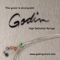 Godin Nickel Wound Electric Guitar Strings