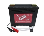 Gill TSC-01V 24-Volt Lead Acid Battery Charger - 110-Volt