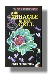The Miracle in the Cell (video)
