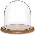 "Glass Dome with Oak Base - 8"" x 8"""