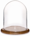 "Glass Dome with Oak Base - 8"" x 10"""