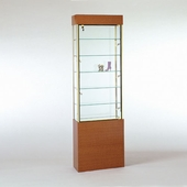 Rectangular Wall Display Case