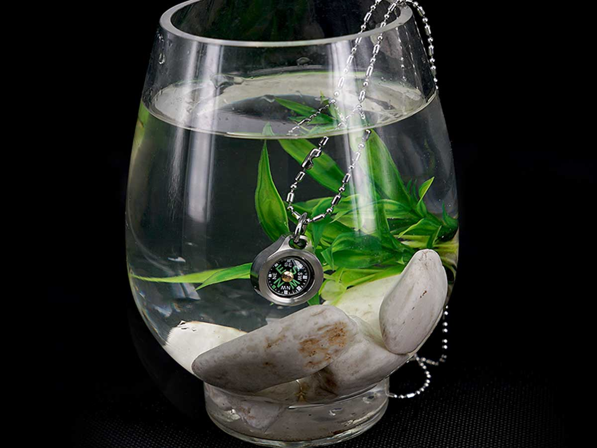 Compasses in a fish bowl