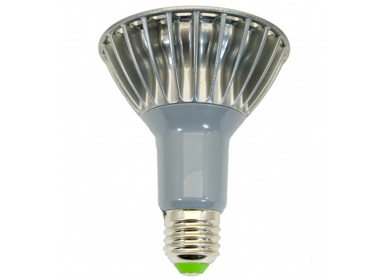 Top down view of Golden Gadgets AC bulb