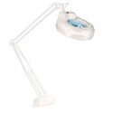 GemOro 2.25x Deluxe Magnifier Light with Bench Clamp (GEMORO-2267)