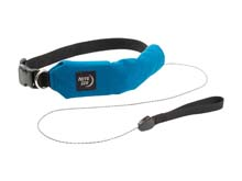 Nite Ize RadDog All-In-One Collar and Leash - Multisized, Red and Blue