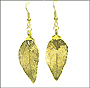 Gold Evergreen Leaf Earrings