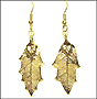 Gold Oak Leaf Earrings