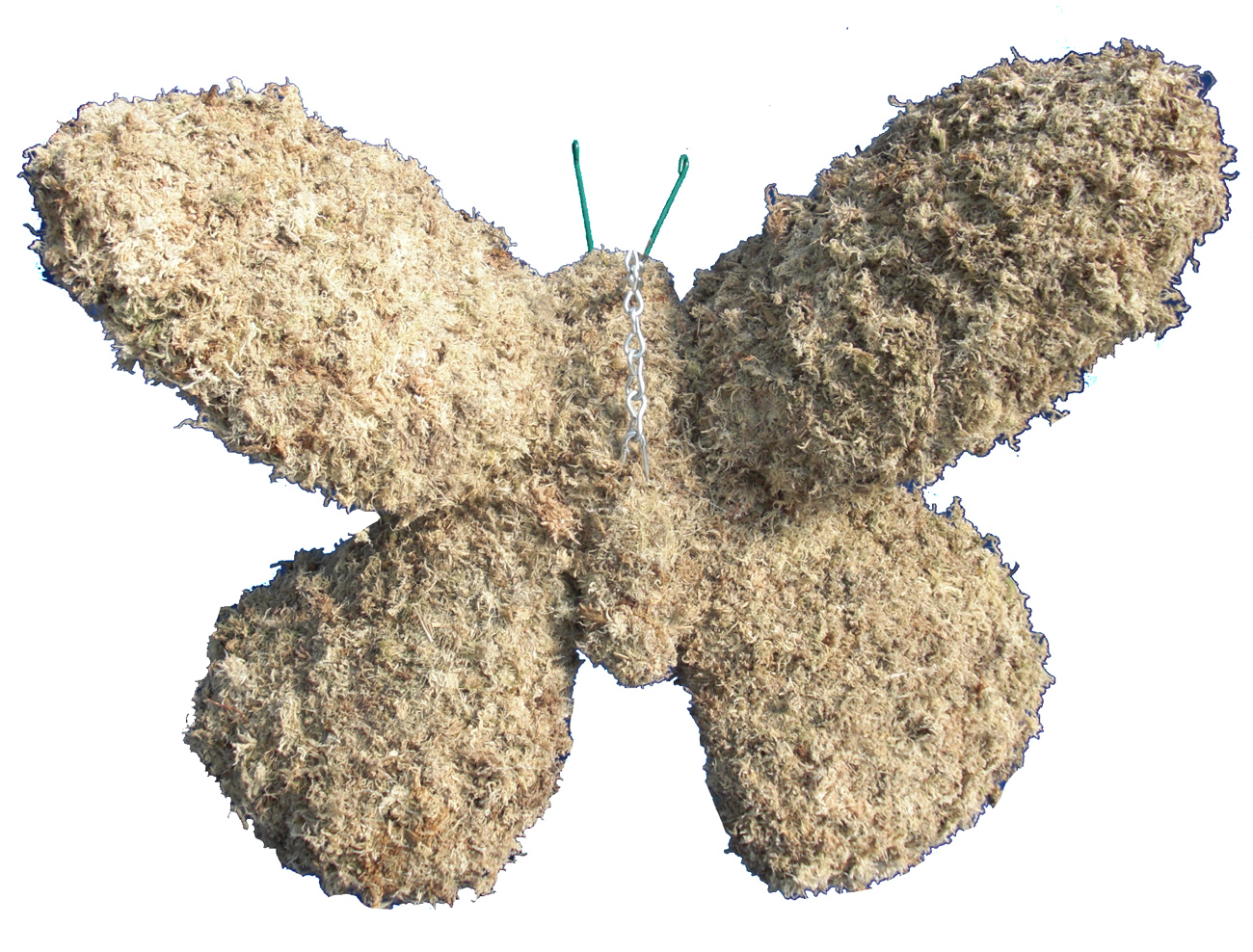 Topiary Butterfly Large Filled With Sphagnum Moss