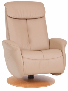 Raana Small Swivel Recliner