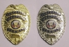 Concealed Weapon Badge Sale
