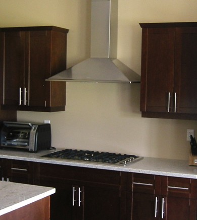 """SYNT30SS300 Faber Decorative Collection 30"""" Synthesis 300 CFM Wall Hood - Stainless Steel"""