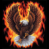 Eagles With Flames