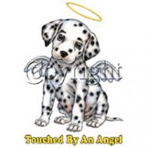 Touched By Angel - Dalmation