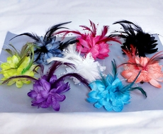 FINE FEATHERED FRIEND HAIRCLIP