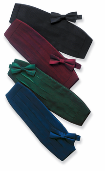 Iridescent Satin Banded Bow Tie
