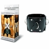 Ultimate Leather Restraint