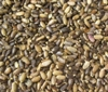 Milk Thistle Seeds - 3oz