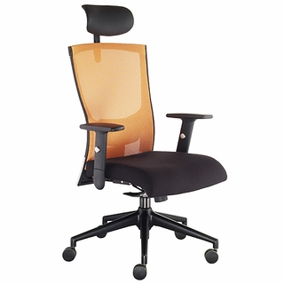 Ergo Office Essence Mesh Task Chair w/ Headrest - Click to enlarge